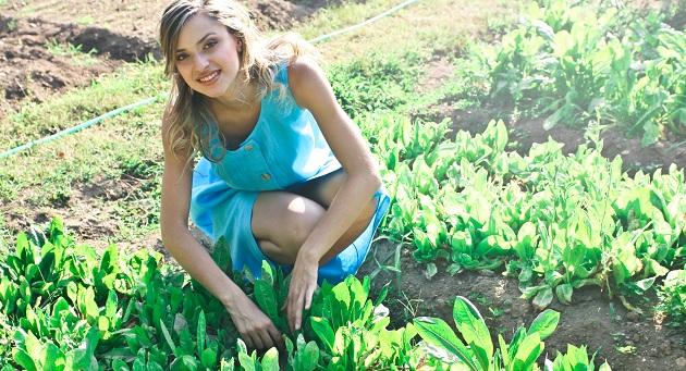 környezettudatos kertészkedés