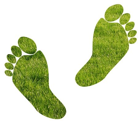 ökológiai lábnyom