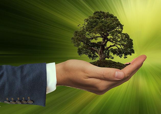fenntarthatóság, üzleti szempontok